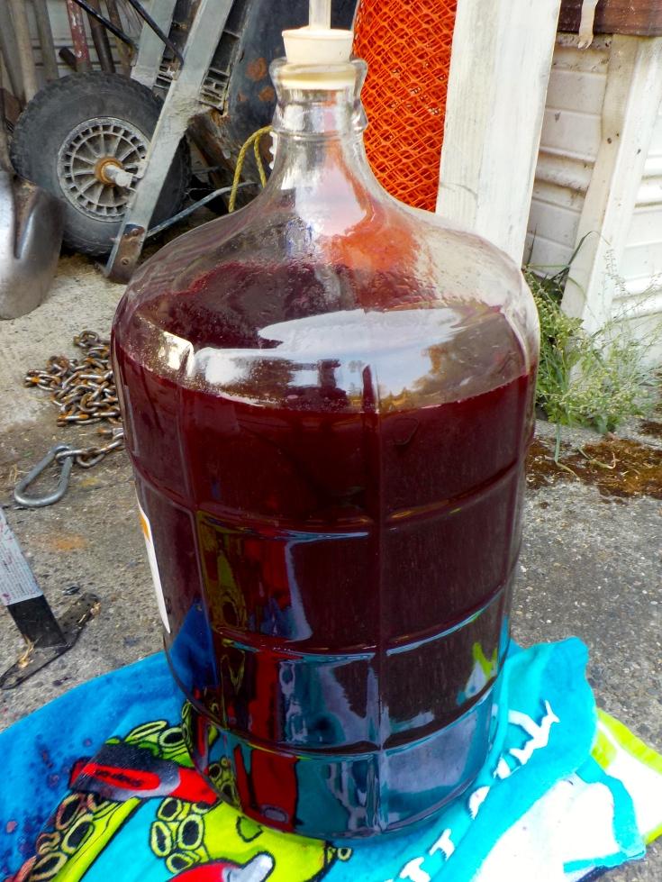 5 gallons of blackberry wine